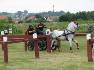 ODRŽANO DVOPREŽNO PRVENSTVO HRVATSKE U PLETERNICI 28.-30.06.2013.