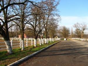 Prostran parkirni prostor za turističke autobuse i uređene šetnice za obilazak Ivandvora