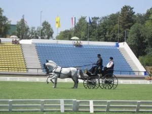 Mađarska, Zanka / 23. - 25.7.2010.